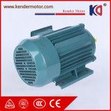 CER-anerkannte Wechselstrom-Phasen-Elektromotor mit hoher Drehkraft