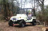 200cc UTV Four-Stroke, 250cc ATV para adultos