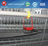 Bauernhof-Maschinerie-automatischer Geflügel-Geräten-Entwurf für Schicht-Bauernhof (A4L160)