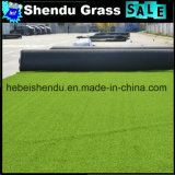O tapete 20mm artificial o mais barato da grama para o mercado de Médio Oriente