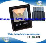 Yaye 18 Ce/RoHSの熱い販売法の穂軸10W LEDの洪水ライト/穂軸10W LEDのフラッドライト/10W LEDの庭ライト