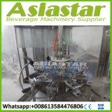 Automatische Kleine het Vullen van het Water van de Fles van het Huisdier Plastic Machines