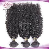 Tecelagem Kinky do cabelo da onda do cabelo malaio Curly barato do Virgin dos produtos