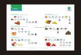 과일 주스 생산 설비와 기술