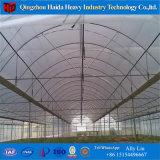 Solo abarcan la película de plástico agrícola de gases de efecto túnel para pepino