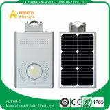 Luz de calle residencial solar de la luz 12W LED, lámpara solar del jardín