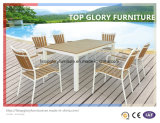 Mobília de jantar ao ar livre de Plasticwood Set+Plasticwood (TG-1292)