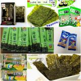 Nori /Seaweed/Sea 사초 (ZP-100)를 위한 베개 유형 플레스틱 필름 교류 감싸는 기계
