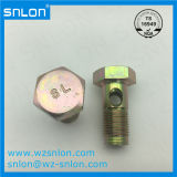 Custom Hex Head Cap Screw with Holes for car parts