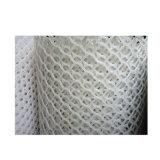 Prix bon marché net plat hexagonal de HDPE d'exportation