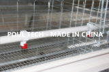 jaulas fuertes y durables de un marco pequeñas del pollo para la granja avícola