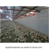 De Apparatuur van het Gevogelte van het Landbouwbedrijf van de Apparatuur van het Fokken van de kip voor Verkoop
