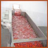 Máquina de lavar automática do tomate