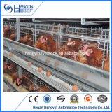Jaula Breeding galvanizada del pollo con introducir automático
