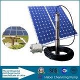 bomba de agua accionada solar sumergible popular de irrigación de la bomba de la C.C. 24V