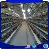 Camera commerciale prefabbricata dell'acciaio della struttura del pollo del pollame