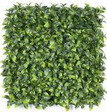 [أوف] يحمى سلع معمّرة [فيربرووف] اصطناعيّة عشب سياج سياج اللون الأخضر جدار شاشة عزلة شاقوليّة حديقة تمويه معمل ورقة