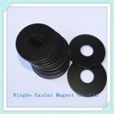 Magneet Van uitstekende kwaliteit van de Ring van het Plateren van het zink de Permanente