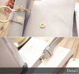 Madame chaude Handbag de prix usine de vente d'unité centrale de modèle de mode de sac neuf de femmes élégants
