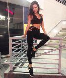 De sexy Holle Broek van de Beenkappen van de Sport van het Verband van de Yoga Balck (3034)