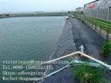 A protecção de bacia de piscicultura