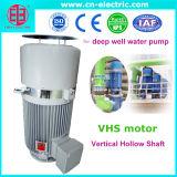 Série de Vhs do Eixo Oco vertical do motor de indução de CA