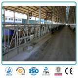 農業のプレハブの金属フレームの鉄骨構造デザイン牛農家