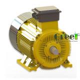 Einfache Pflege schwanzloser elektrischer Dreiphasen-Wechselstrom-Dauermagnetgenerator
