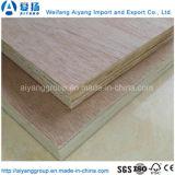 جيّدة نوعية حور لب خشب رقائقيّ رخيصة تجاريّة لأنّ عمليّة بيع