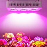 Potência elevada 1000W Full Spectrum levou a iluminação da fábrica