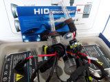 Gelijkstroom 24V 55W 9005 HID Lamp met Regular Ballast