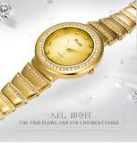 Belbi дамы смотреть моды повседневный небольшой набор коррозии поверхности водонепроницаемые кварцевые часы