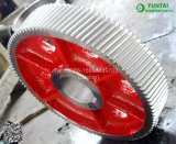 Ersatzteil-Geschwindigkeits-Verhältnis-Gänge für Kneter-/Kneter-Maschinen-Gänge