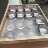 3 protezione di pollice Sch40 A403 310S ASME B16.5