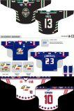 Hokey di ghiaccio personalizzato di Echl Colorado Eagles 2011-2015 dei capretti delle donne degli uomini Jersey