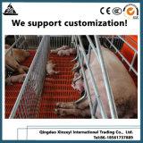 Оцинкованные трубы Farrowing ящиков Pig ограждения экспортера