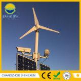 200W 12V 24V kleiner Wind-Generator