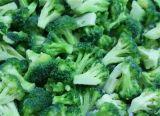 Горячая продажа IQF замороженных брокколи и замороженных овощей