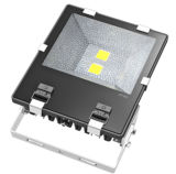 120W à LED Projecteur de jardin (TJ-FL-002-120W)