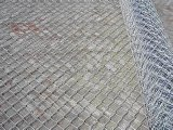 Sale를 위한 Chain Link Fence의 공장 Direct Supplier