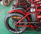 [20ينش] إطار العجلة سمين كهربائيّة [موونتين بيك] يطوي درّاجة