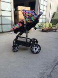 Heiße Verkaufs-Baby-Spaziergänger/Baby-Träger Sr-BS9