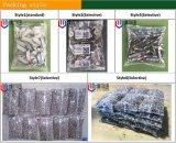 Vendas diretas dos fabricantes da máquina de empacotamento dos prendedores e dos parafusos de Sydney