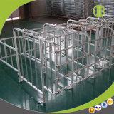 Productos individuales de la parada del proyecto de encargo del cerdo de la calidad