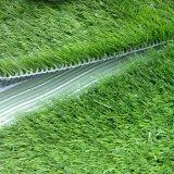 يركّب عشب اصطناعيّة ومرج اصطناعيّة اثنان عنصر بوليثين غراءة