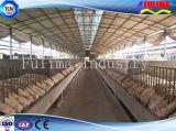 Casa prefabricada del cerdo de la estructura de acero del edificio para el ganado (FLM-F-016)