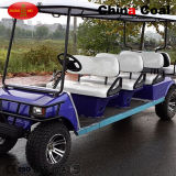 6+2 Seaterの高速ガスのゴルフカート