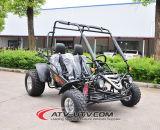 La vendita diretta Mademoto 2 Seater va Kart per l'adulto