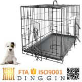 Heiseres Welpen-Hundegroßhandelshaus