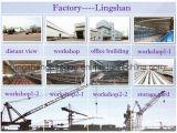 プレハブの鉄骨構造の波形の鋼板車のガレージ(LS-S-089))